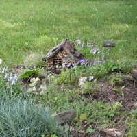 The little Fairy Garden